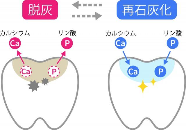 銀座みらい歯科院長コラム|口腔内PH値と唾液のはたらき|脱灰と再石灰化の模式図